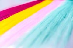 Color clip in hair Stock Photos