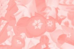 Color coral background with floral pattern. Abstract background. Color coral background with tulip floral pattern stock image