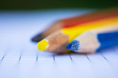 Color crayons macro Royalty Free Stock Photo
