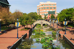 Color on the Creek - Frederick Maryland Royalty Free Stock Photo