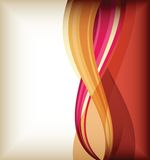 Color curve lines background Stock Image