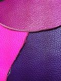 Color de cuero Imágenes de archivo libres de regalías