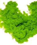 Color de fondo abstracto de la pintura del chapoteo verde de la tinta en el agua aislada en el fondo blanco foto de archivo