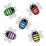 Color de la avispa Fotografía de archivo libre de regalías