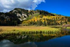 Color de la caída de la montaña Imagenes de archivo