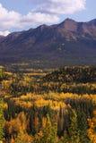 Color de la caída en Alaska Foto de archivo