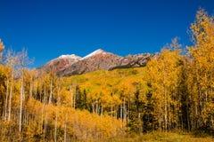 Color de la caída en la mota con cresta Colorado Imagen de archivo libre de regalías