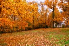 Color de la comunidad fotos de archivo