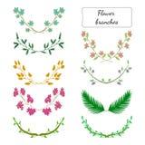 Color de la flor branches2 Imagen de archivo libre de regalías