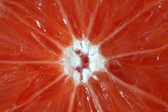 Color de la fruta cítrica Fotos de archivo libres de regalías