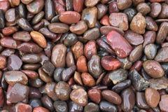 Color de piedra del marrón del guijarro del fondo de la naturaleza con el espacio para usted Fotos de archivo libres de regalías