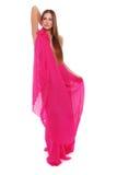 Color de rosa caliente Imagenes de archivo