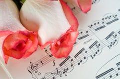 Color de rosa color de rosa y nota Imágenes de archivo libres de regalías