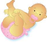 Color de rosa de bebé Fotografía de archivo libre de regalías