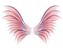 Color de rosa de las alas del pájaro o de la hada del ángel Imagenes de archivo