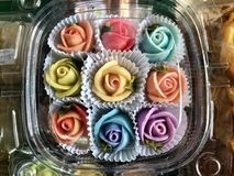Color color de rosa hermoso imágenes de archivo libres de regalías