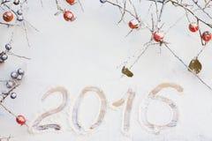 Color de rosa salvaje y el endrino ramifica con las frutas en la nieve Fotografía de archivo
