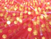 Color de rosa y fondo del oro Foto de archivo