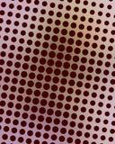 Color de rosa y puntos de Brown Foto de archivo libre de regalías