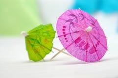 Color de rosa y verde Imágenes de archivo libres de regalías