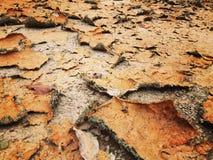 Color de tono caliente árido de la aspereza del piso imágenes de archivo libres de regalías