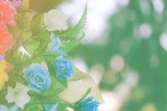 Color de tono en colores pastel de la flor Imágenes de archivo libres de regalías