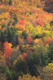 Color del otoño de Vermont Fotos de archivo