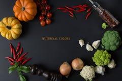 Color del otoño la comida de la naturaleza con las verduras frescas foto de archivo