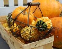Halloween pumpkins still life Stock Photo
