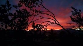Color detrás de la naturaleza Fotos de archivo