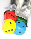 Color dice with sack Royalty Free Stock Image