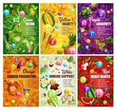 Color diet brochure healthy food nutrition. Color diet healthy food and vitamins in fruits and vegetables. Vector organic natural nutrition salads and berries stock illustration