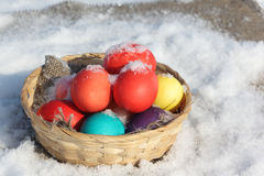 Color Easter eggs in a wooden basket  in snow Stock Photos