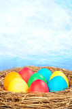 Color eggs in a golden nest Stock Photo