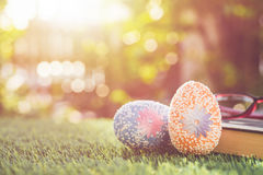 Color eggs on green grass with blur bokeh and sunlight backgroun Stock Images