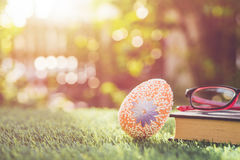 Color eggs on green grass with blur bokeh and sunlight backgroun Stock Photography