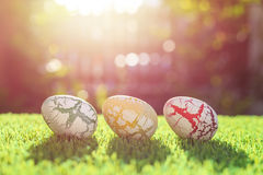 Color eggs on green grass with blur bokeh and sunlight backgroun Stock Image