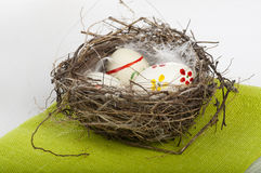 Color eggs in nest Royalty Free Stock Photo