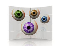 Color eyes Royalty Free Stock Images