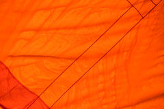 Color fabric orange Texture  used as background. Stock Photos