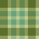 Color fabric plaid. Seamless vector illustration. Stock Photography