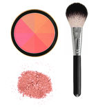 8 color face blush with brush isolated on white Stock Images