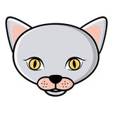 color face cat icon Stock Photo