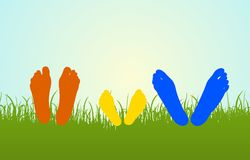 Color family legs on grass Royalty Free Stock Photo