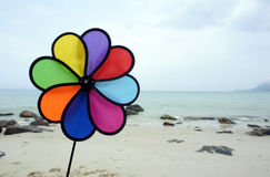 Color fan Stock Image