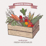 Color farmers market label with vegetables in wooden crate. Based on hand drawn sketch Royalty Free Stock Image