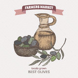Color farmers market vintage olives and olive oil template. Royalty Free Stock Images