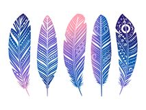 Color feathers vector set. Hand sketched tribal feathers isolated on white royalty free illustration