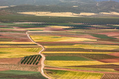 Color fields in Castile-La Mancha in Spain Royalty Free Stock Photography