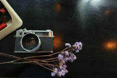Color film camera and  vintage antique typewriter with purple dry flower - Top view with copy space. Royalty Free Stock Image
